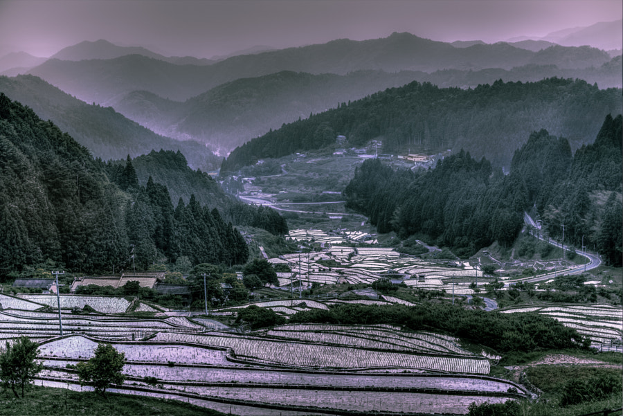 Thousand Terraced Rice FieldsⅡ by Hidenobu Suzuki on 500px.com