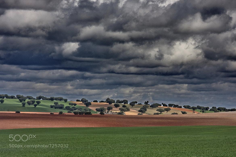 Photograph campo de Salamanca by martin rodriguez sanchez on 500px