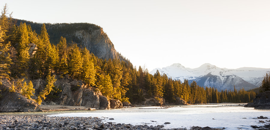 Photograph Bow River Sunrise by Jay Mitchosky on 500px