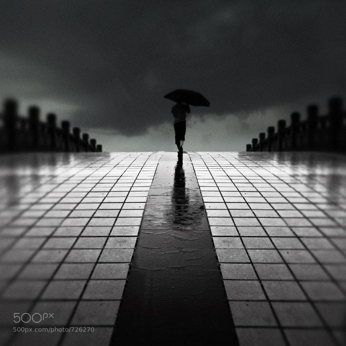 Photograph Rain bridge by weichuan liu on 500px