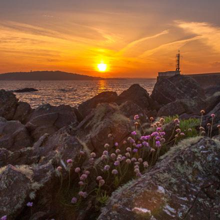 Bovisands Sunset