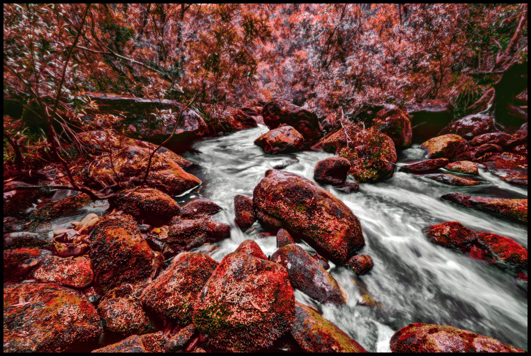 Photograph Go with the Flow by Steve Passlow on 500px