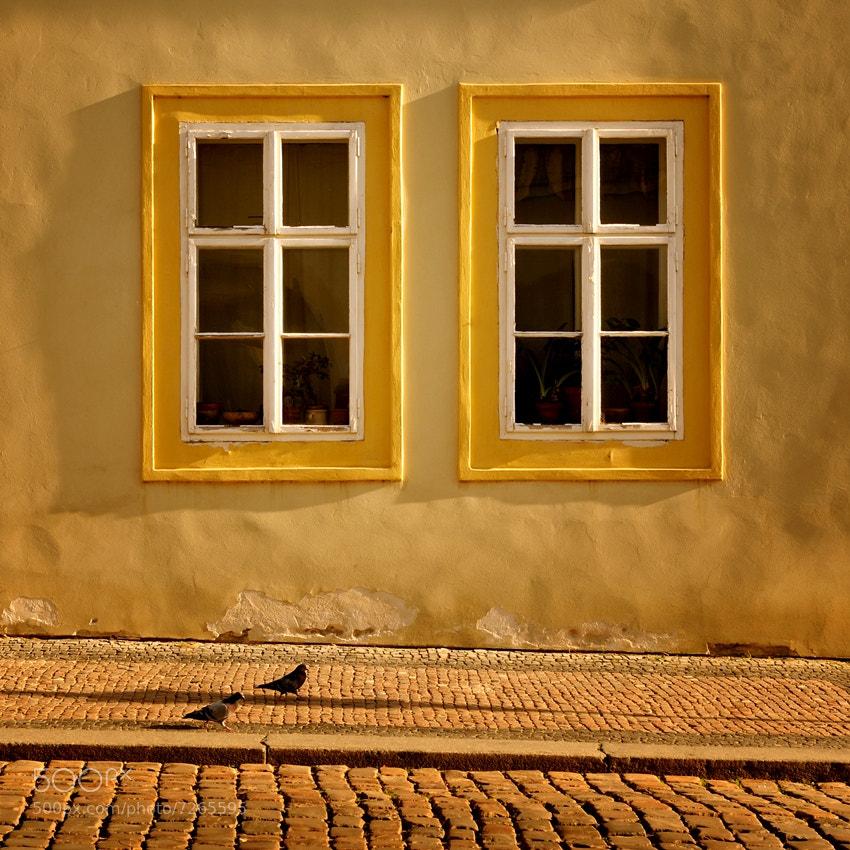 Photograph *** by Sebastian Luczywo on 500px