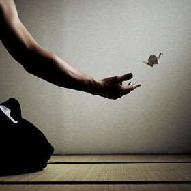 letting go by Johan Brooks (JohanBrooks)) on 500px.com