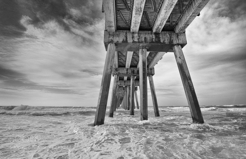 Photograph Pier 39 by john bingaman on 500px