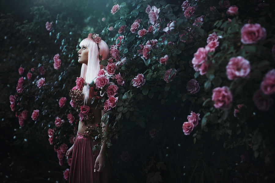 Photograph as the moon rose so did she.. by Bella Kotak on 500px