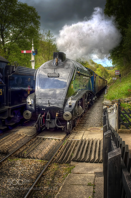 Photograph Sir Nigel by Neil Cherry on 500px