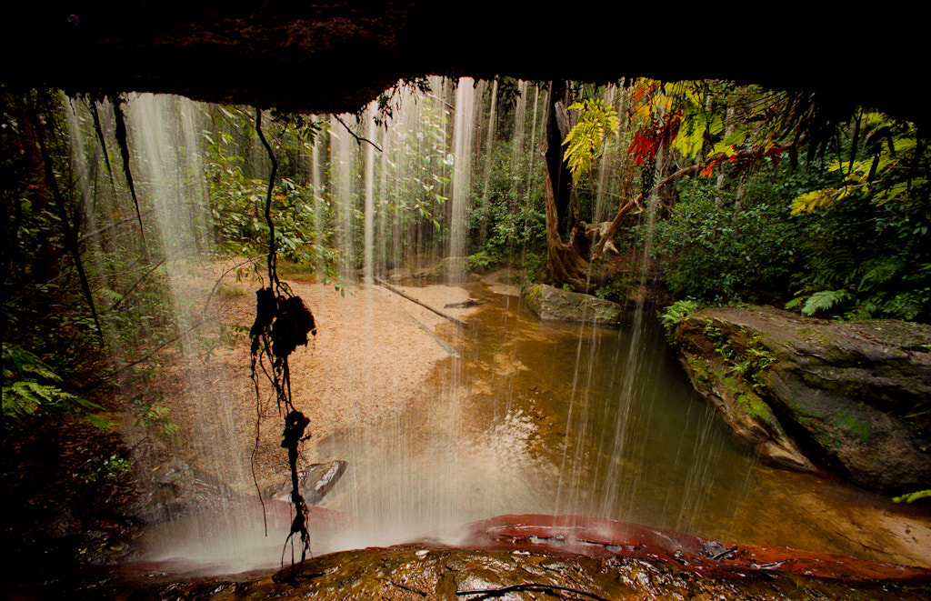 Photograph Blue mountains - Australia by Sven Doublet on 500px
