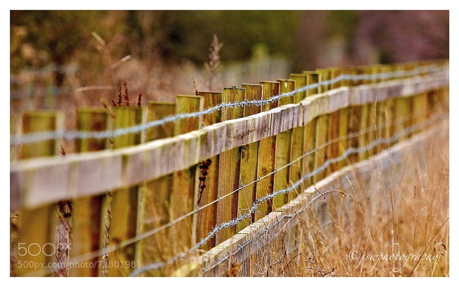 Photograph Fence by Jason Wood on 500px