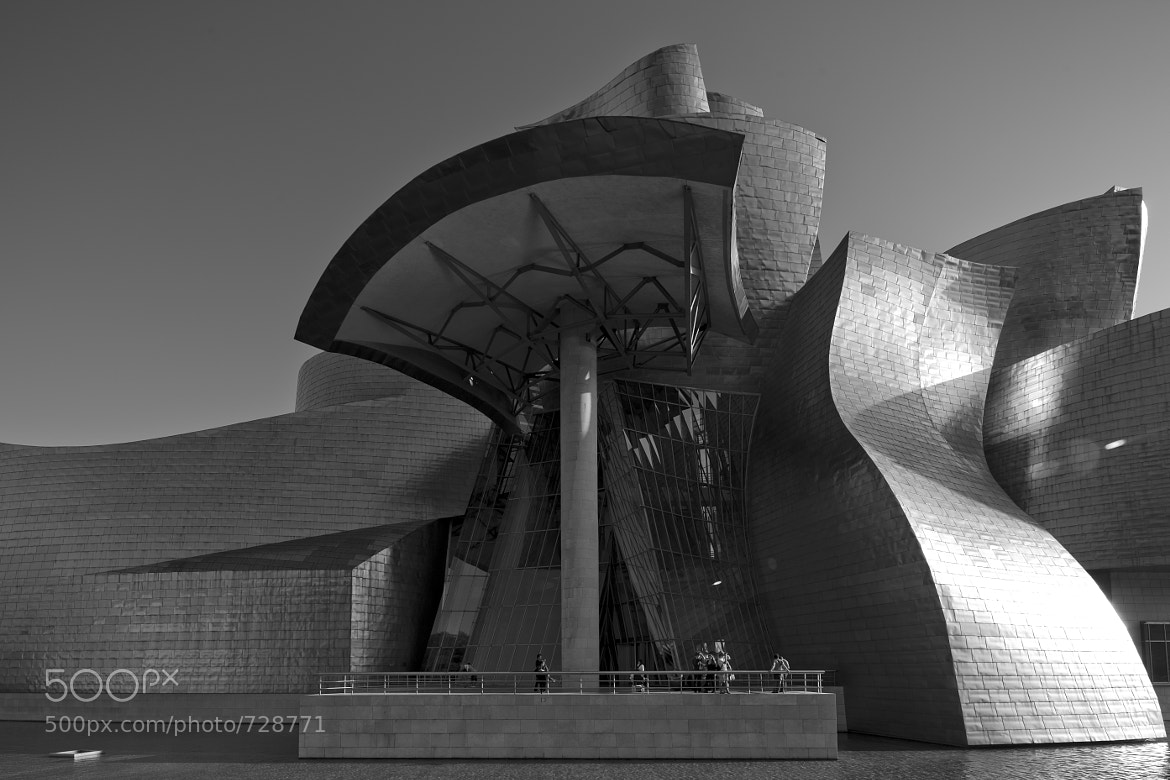 Photograph Guggenheim Bilbao I by Alejandro Iborra on 500px