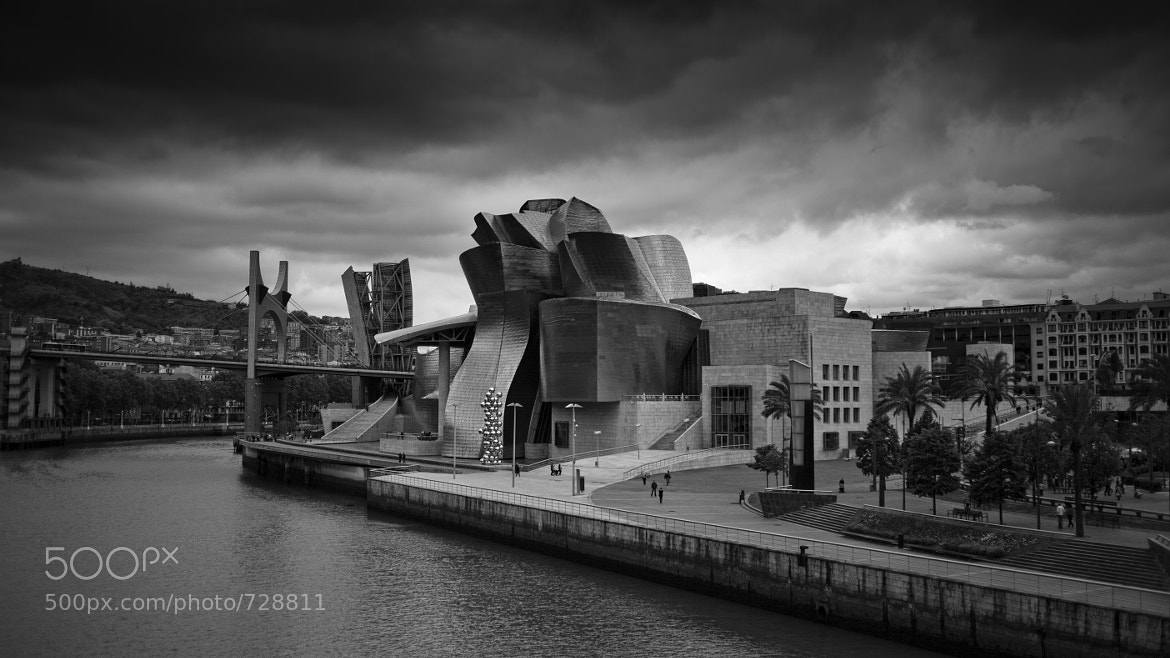 Photograph Guggenheim Bilbao III by Alejandro Iborra on 500px