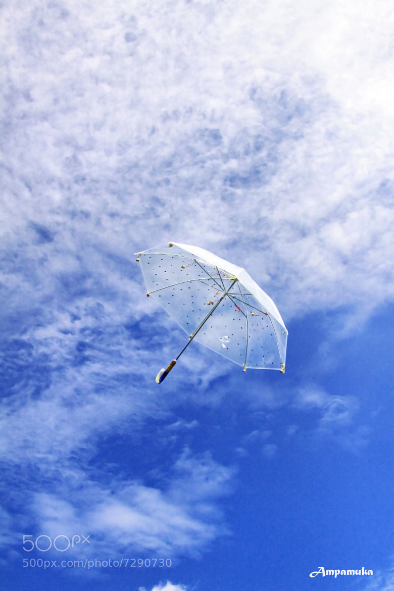 Photograph Flying Umbrella by Suradej Chuephanich on 500px