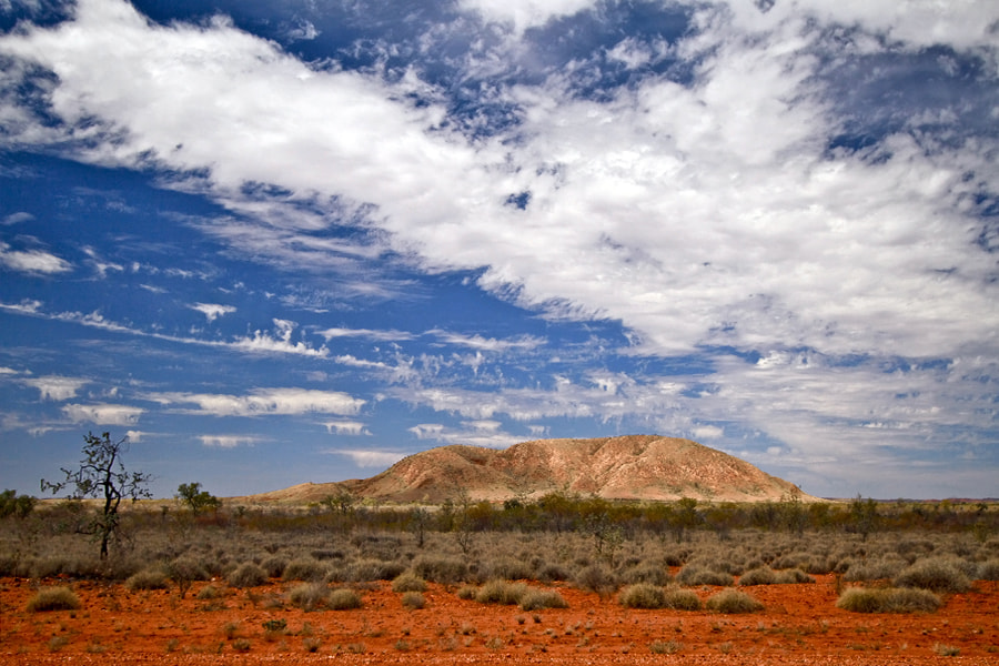 Photograph Roadside Outback by Peter Daalder on 500px