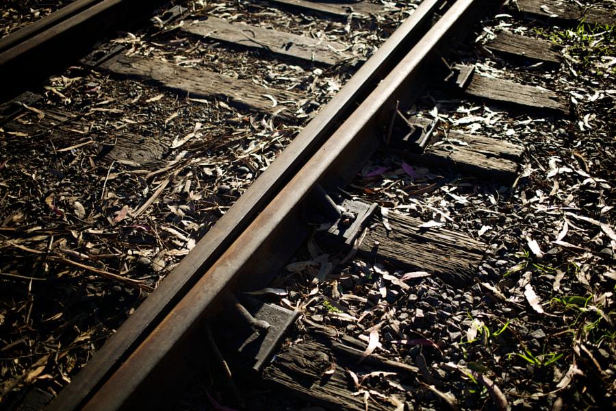Sant Cruz Railroad Tracks
