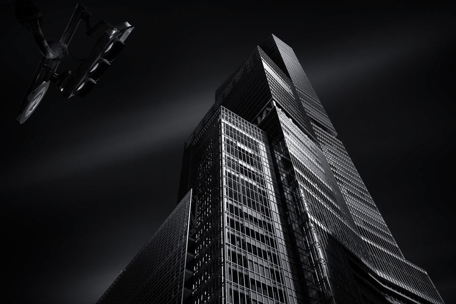 SHOT IN THE DARK by Yoshihiko Wada on 500px.com