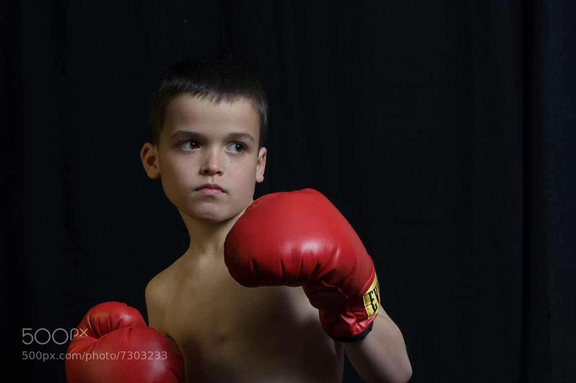Photograph the boxer by Martin Cauchon on 500px