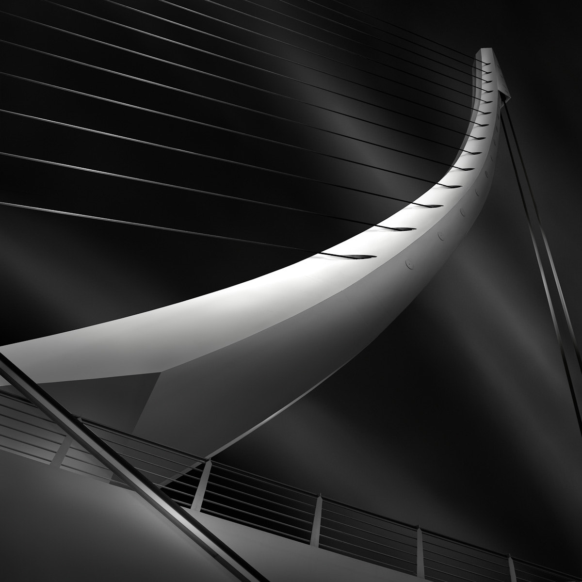 Photograph like a harp's strings II by Julia Anna Gospodarou on 500px