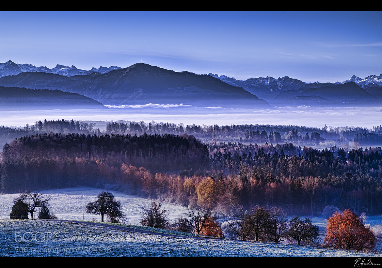 Photograph Late Autumn by Robin Halioua on 500px