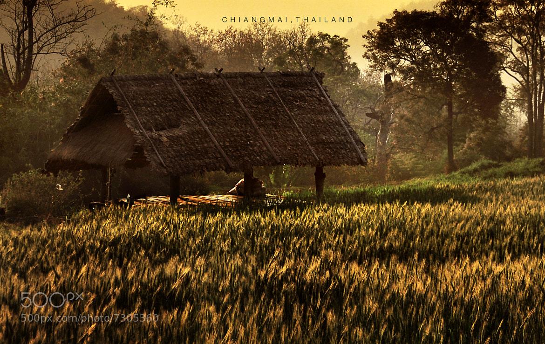 Photograph Chingmai, Thailand by Saiyawong Lookkaew on 500px