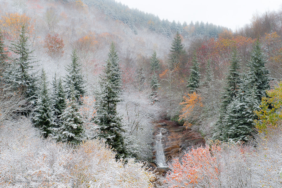 Photograph Fall Color with snow by Les Saucier on 500px