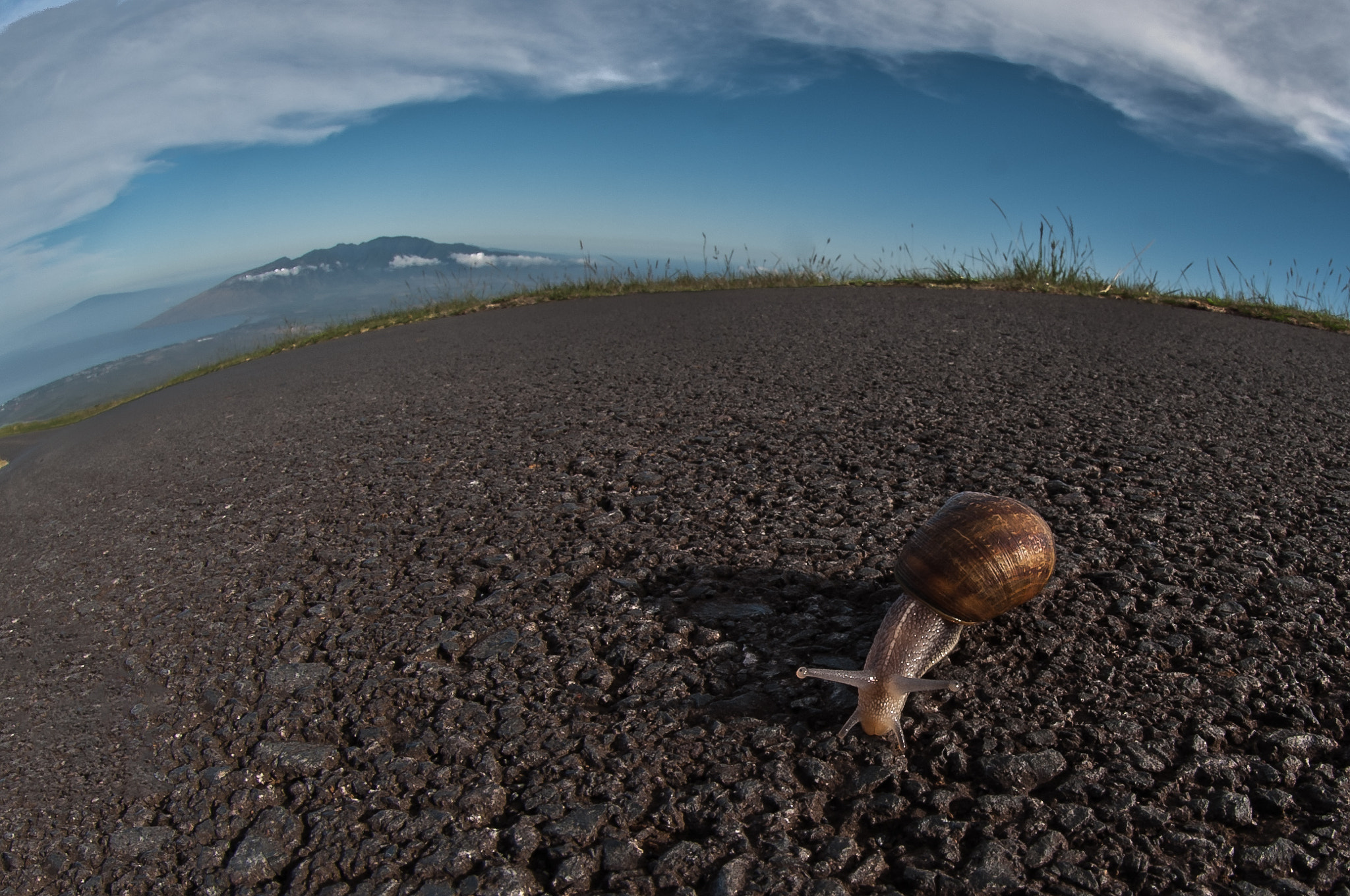 Photograph On the road to Haleakala by Brian Heiland on 500px