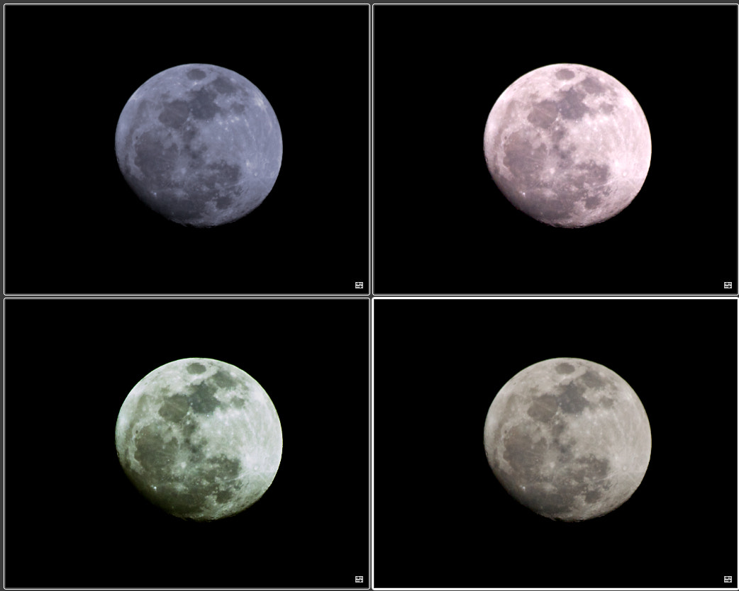 Photograph Choose One Moon by jamil ghanayem on 500px