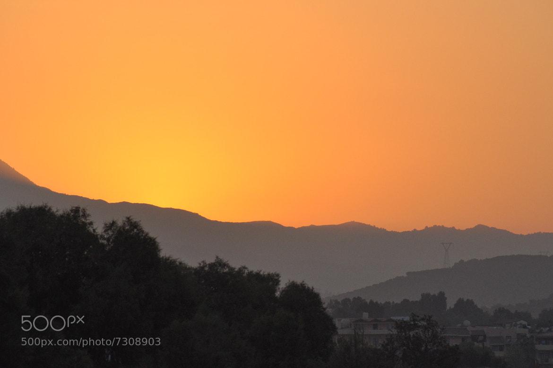Photograph Golden sunset by Wim De Block on 500px