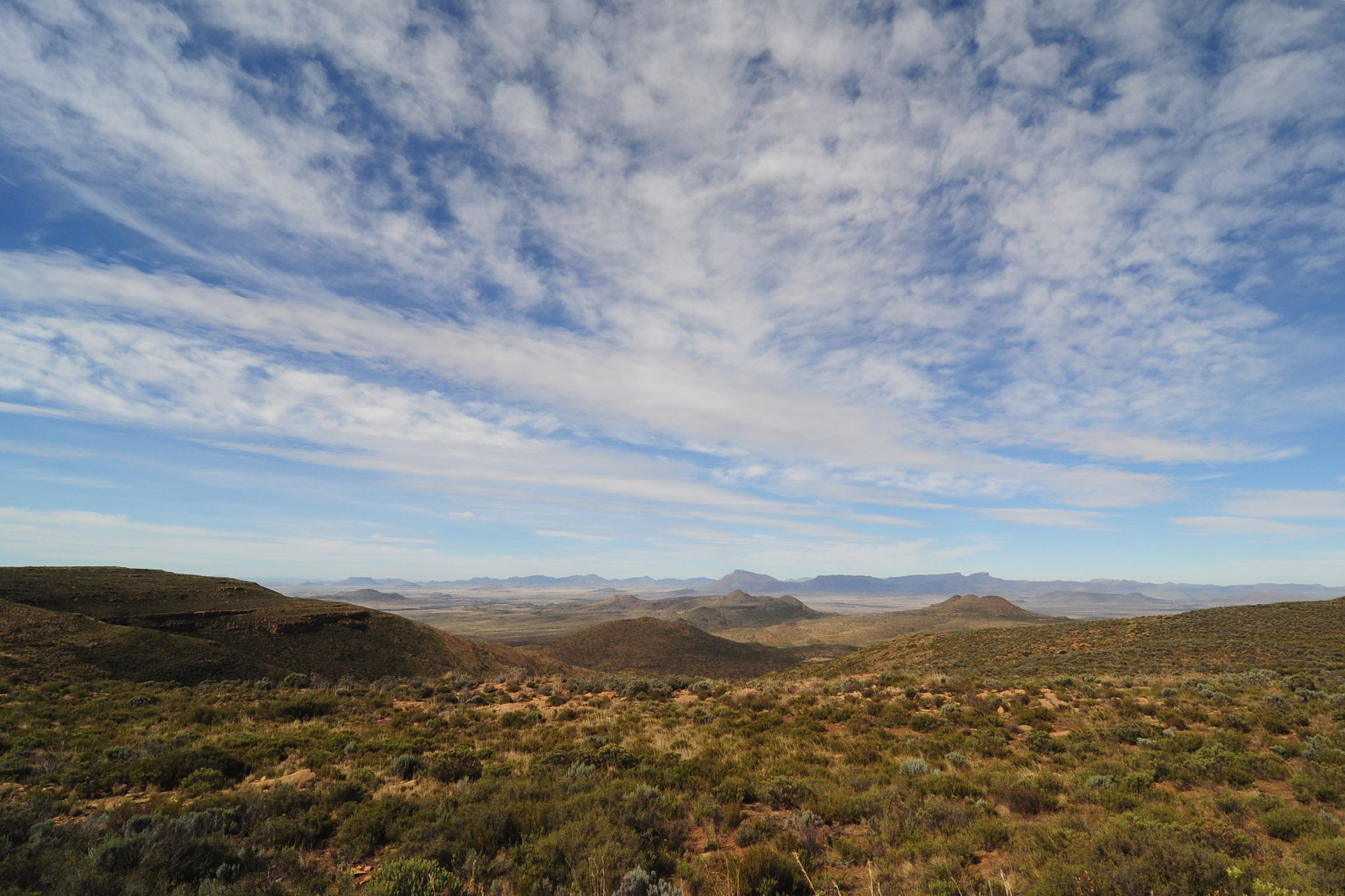 Photograph Karoo Nature by Emile le Roux on 500px