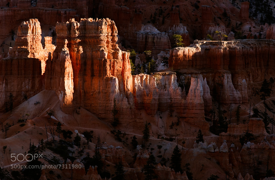 Photograph Bryce Canyon National Park, Utah, USA by David Bostock on 500px