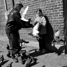 The pigeons and the girl by Emmanuel Dubois (manuphoto)) on 500px.com