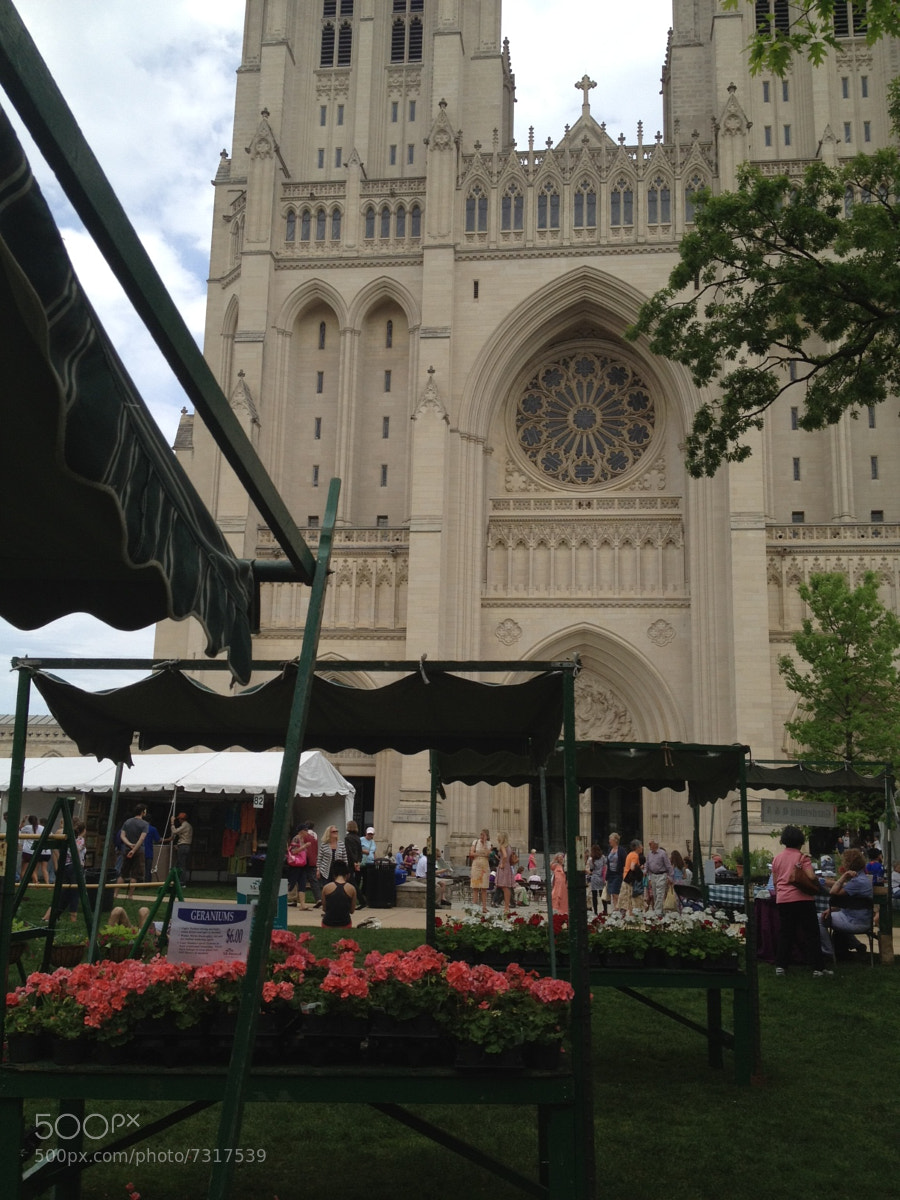 national cathedral by sylviaburkina  on 500px.com