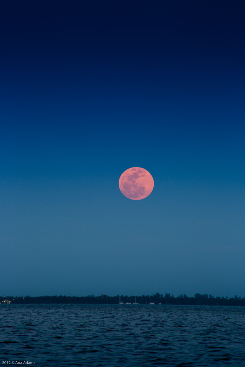 Photograph Super Moon by Ana Adams on 500px
