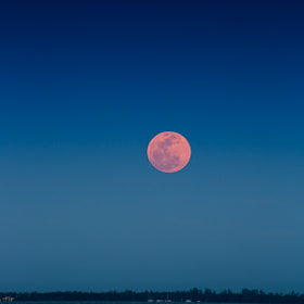 Super Moon by Ana Adams (AnaAdams)) on 500px.com