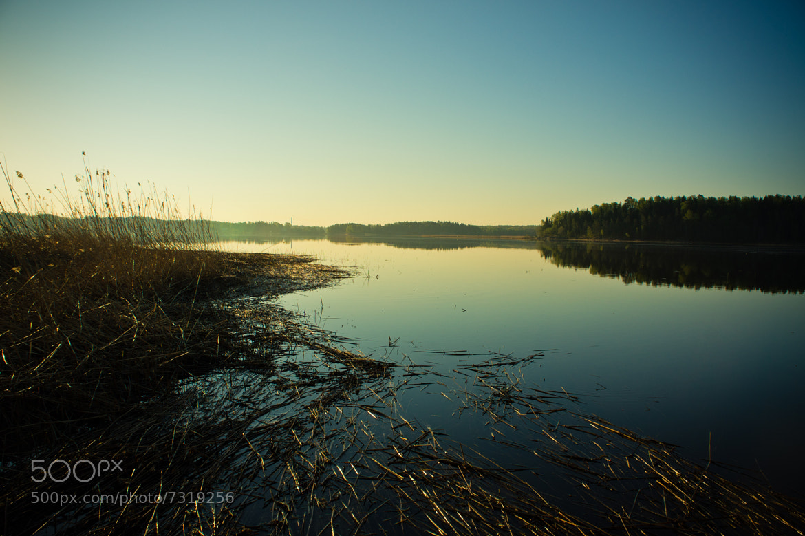 Photograph Finland at the dawn by Luca Febbraio on 500px