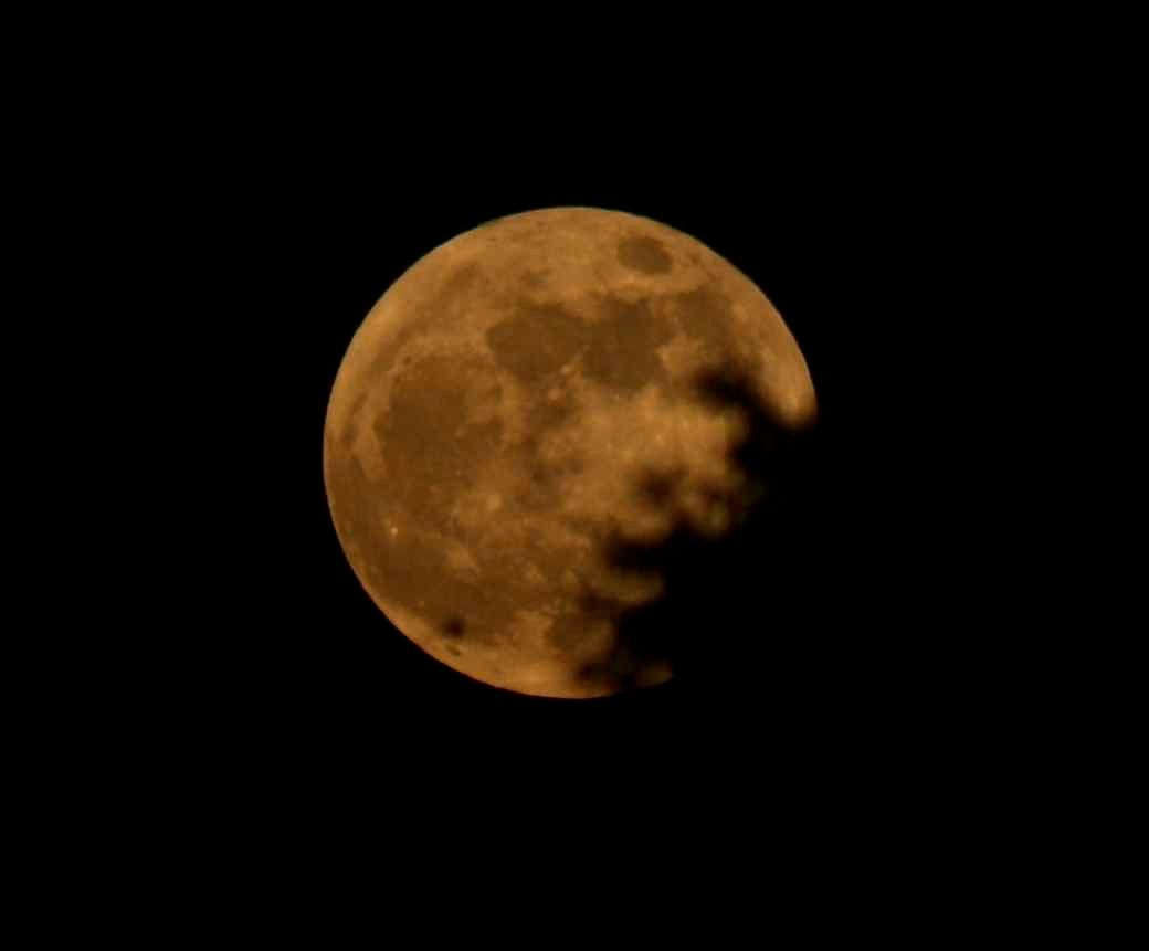 Photograph 05/05/12 Supermoon by Ann Matthew on 500px