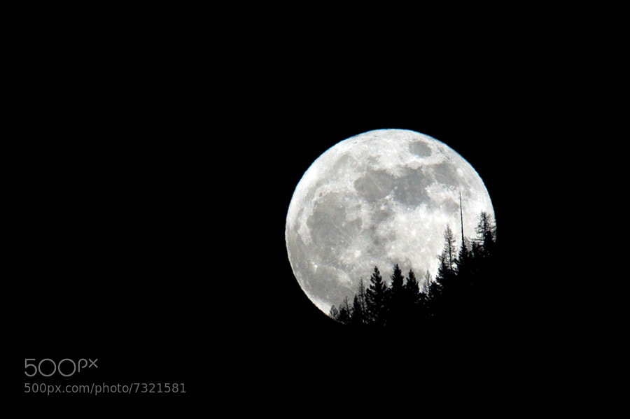 Photograph The Big Moon by Morten  Byskov on 500px