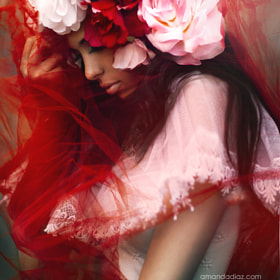 La Fleur by Amanda Diaz (AmandaDiaz)) on 500px.com