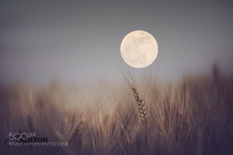 Photograph Super Moon AZ by Justin Ashton on 500px