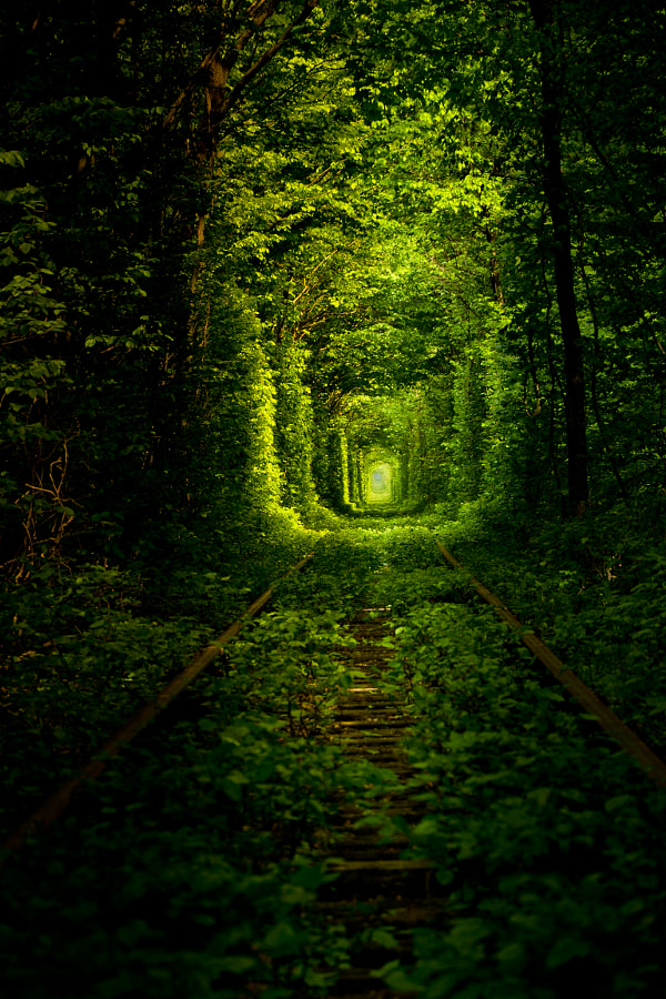 Tunnel of Love by Vadim Kydruk on 500px.com