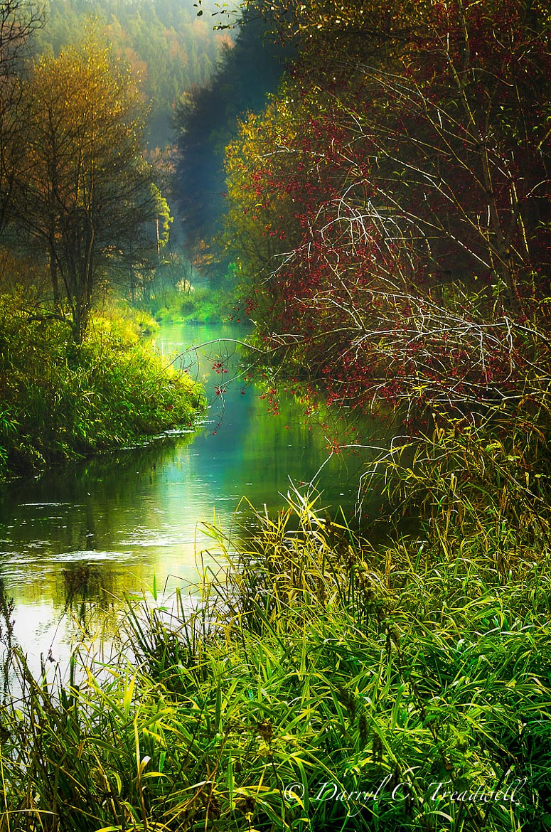 Photograph Stream in Mühlhausen by Treadwell Images on 500px