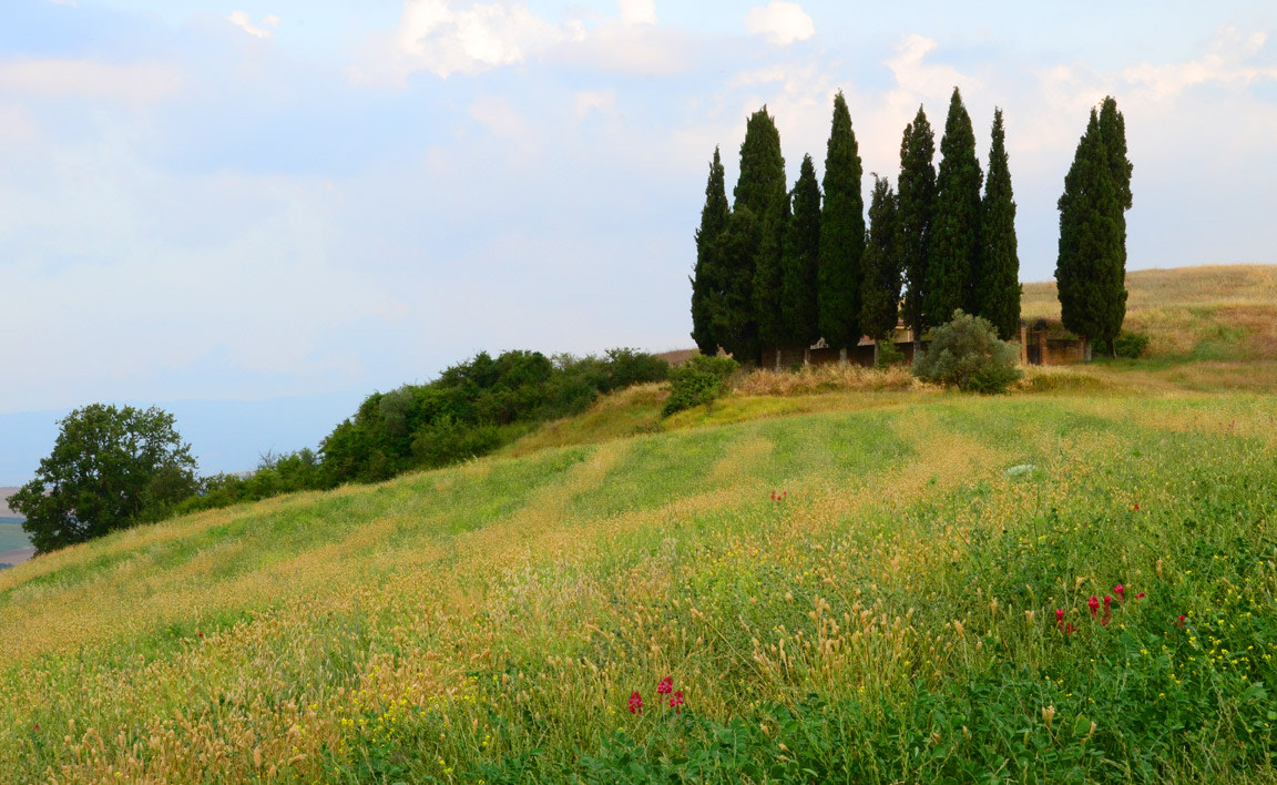 Photograph Tuscany Hillside by Justin Bowen on 500px