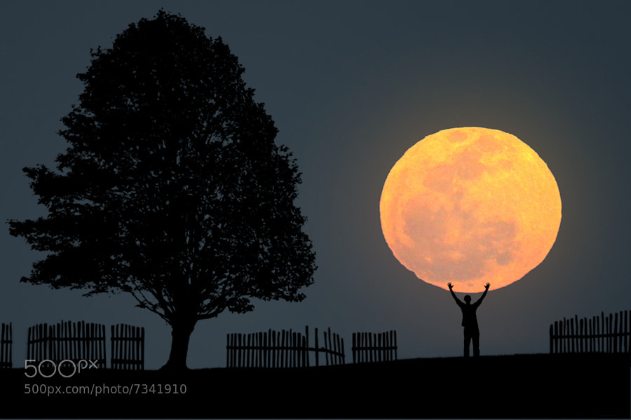 Photograph The Big Moon by Carlos Gotay on 500px