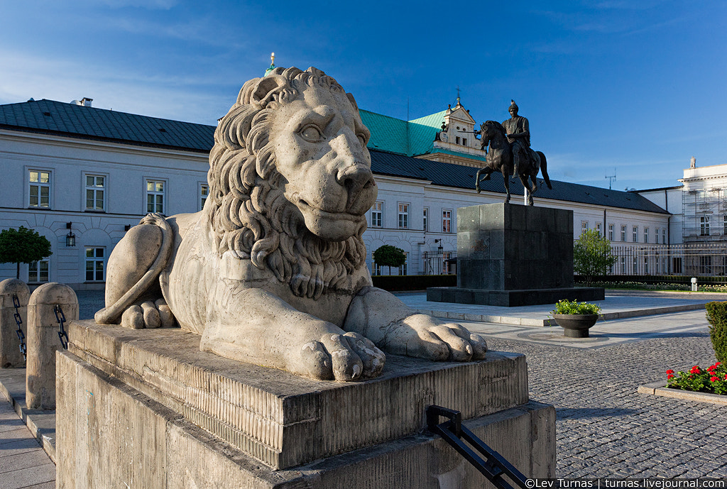 Photograph Warszawian Lion by Lev Turnas on 500px