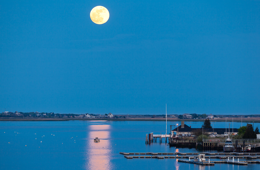 Photograph Super Moon I, Newburyport, Massachusetts. by Stanton Champion on 500px
