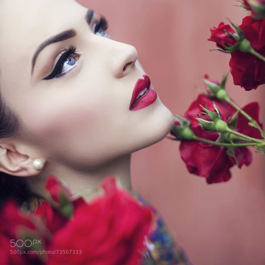 Photograph Red flowers by Maja Top?agi? on 500px