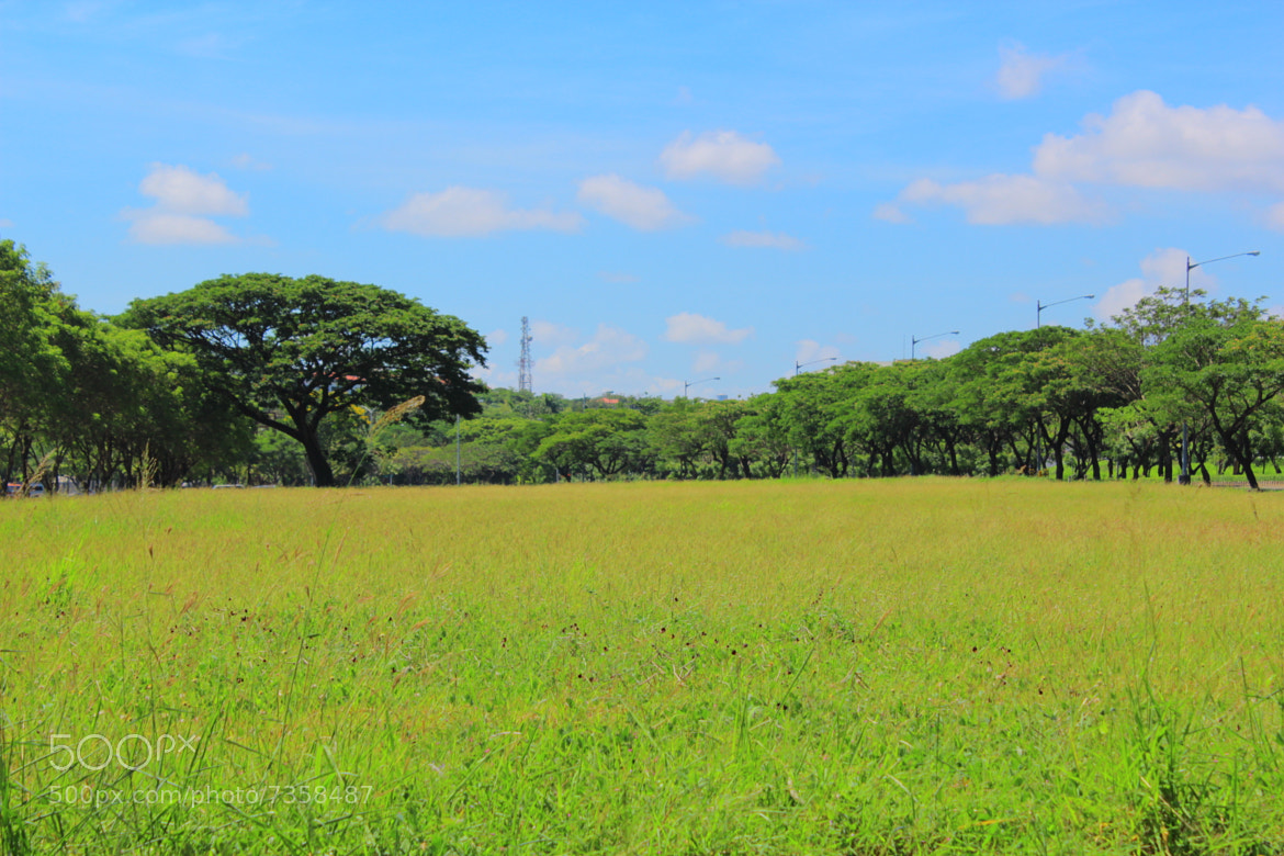 Photograph Across the Field by Ian Penales on 500px