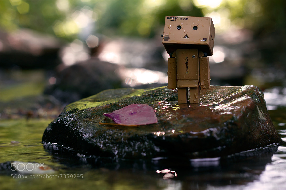 Photograph Danbo by Ibrahim  Alnassar on 500px
