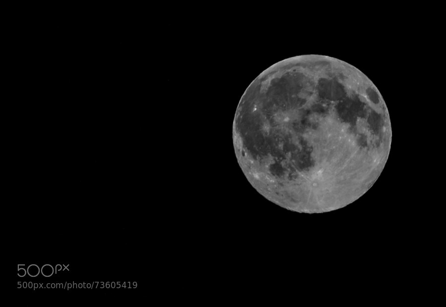 Moon Light by AlessandroMP