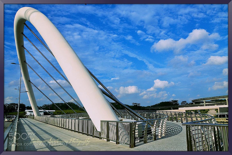 Photograph Punggol Waterway Crescent Bridge by Eustaquio Santimano on 500px