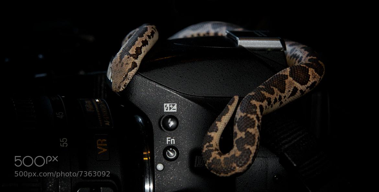 Photograph ShutteR BoA by ViShWa  on 500px